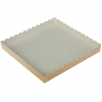 Коробка с прозрачной крышкой 25х25х3 см